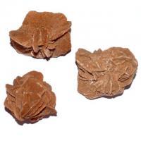 Sandrose ca. 8 - 10 cm