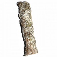 Black Sage Beifuss Bündel ca. 20 - 22 cm