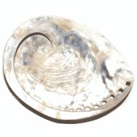 Weisse Abalone Muschel poliert ca. 15 cm