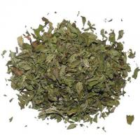 Pfefferminze 25g Mentha X Piperita