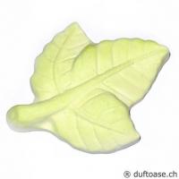 Blatt Duftstein grün