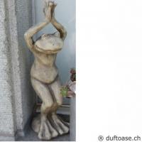"Yoga-Frosch ""der Stuhl"""