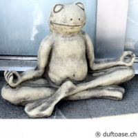 "Yoga-Frosch ""Meditation"""