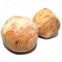 Wurzelknolle aus Tannenholz 9,5 - 12 cm