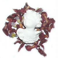 Himmelsblüten-Engel ca.  11,5 x 8,5 cm