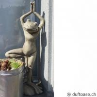 """Yoga-Frosch """"der Baum"""""""